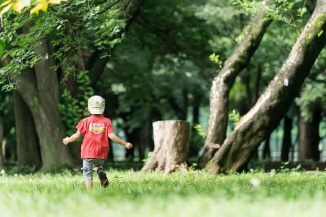 草原を走る男の子